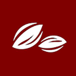 image-cocoa-01